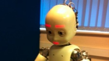 The humanoid robot iCub