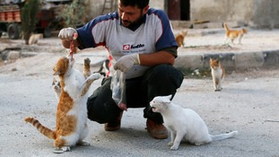 Alaa feeding a cat in the Aleppo district of Masaken Hanano