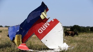 MH17 crash site in eastern Ukraine.