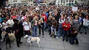 Hundreds of people protesting against the killing of a dog believed to have Ebola