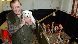 John Lowe 'only meant to kill four dogs'