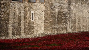 'Blood Swept Lands and Seas of Red' poppies installation
