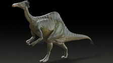 Reconstruction of a reconstruction of Deinocheirus mirif by Korea Institute of Geoscience and Mineral Resources