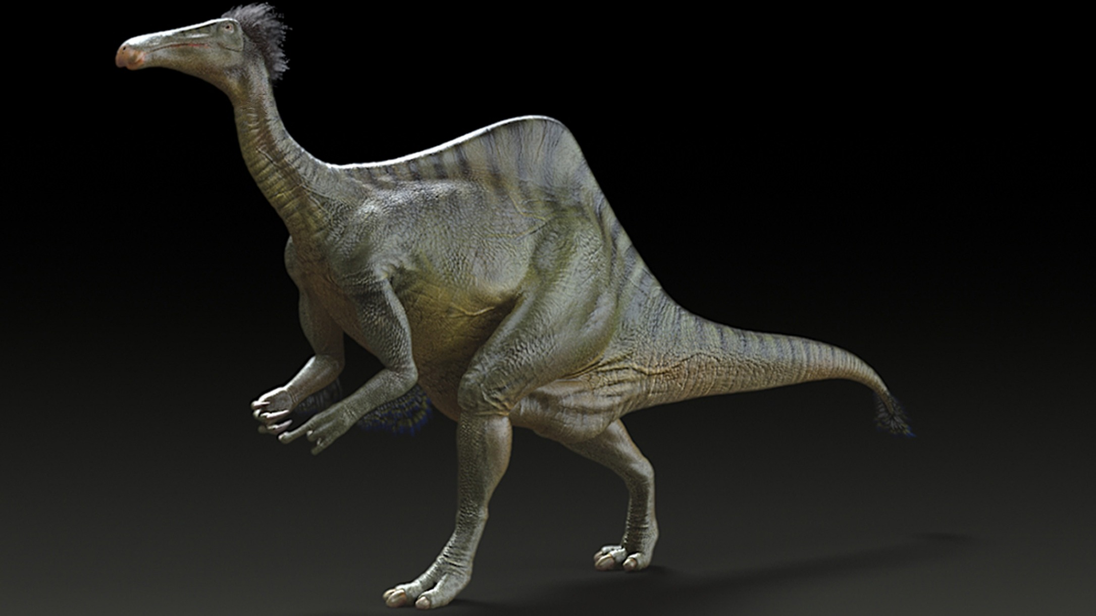 Discovery Channel Shows >> Scientists solve mystery of the humpback dinosaur with a ...