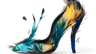 Feather fashion flutters into Bowes