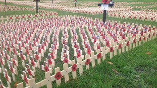 Wooden crosses displayed in Gateshead