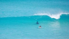 Pictures show surfer followed by a massive shark.
