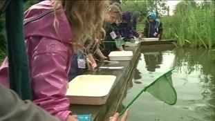 Children introduced to nature at Slimbridge