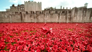 Grieving families unite in field of remembrance