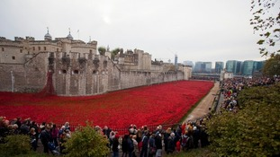 What next for the Tower poppies?