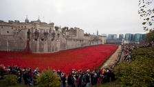 The poppies filling the Tower of London moat