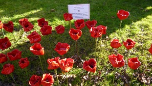 Year Two pupils made these clay poppies as part of their topic on WW1.