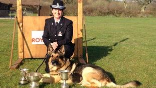 police, dog, Kent