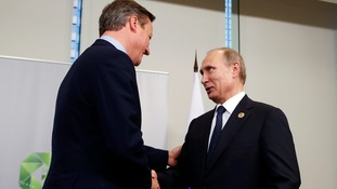 David Cameron and Vladimir Putin at the G20 summit.