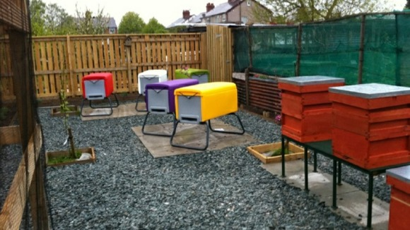 New 'urban' beehives