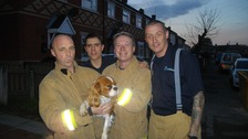 Fire crews rescue family dog while checking safety alarms