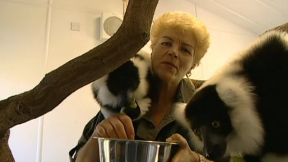 Pam St Clement swaps Pat for pets as she helps homeless animals on This Morning.