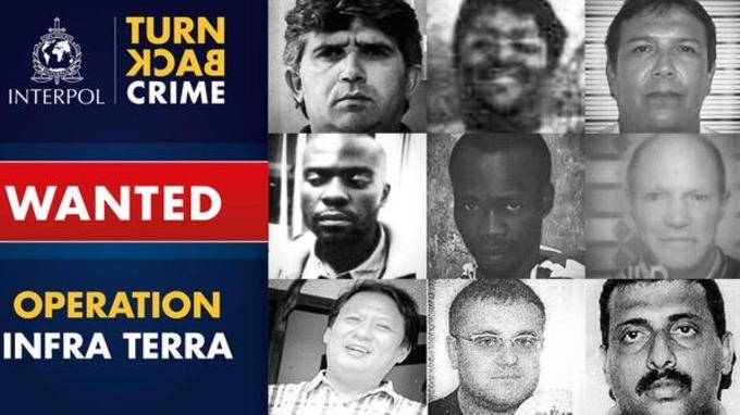 Nine wildlife criminals