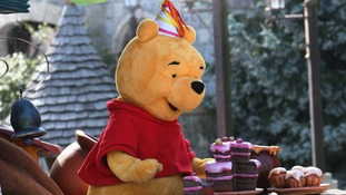 Winnie the Pooh reportedly blocked from Polish playground over 'hermaphrodite' concerns