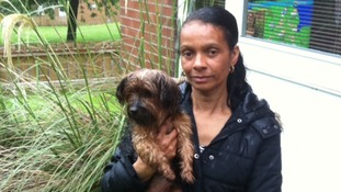 Dog owner Beverley Beard is calling for strict laws surrounding dangerous dogs