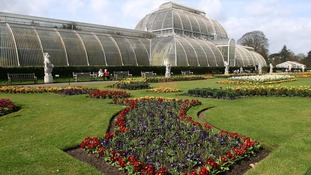 The Palm House at London's Kew Gardens