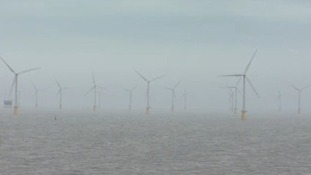 Wind turbines in a windfarm
