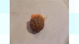 Turnip Prize