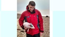 RSPCA inspector Jason Finch after he managed to grab the piglet.
