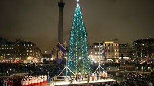The Christmas tree in Trafalgar Square