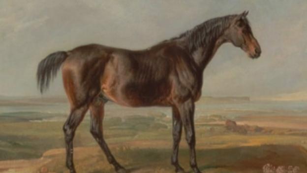 Horse_bones_for_web