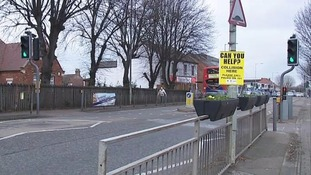The lollipop lady was knocked down on a pedestrian crossing.