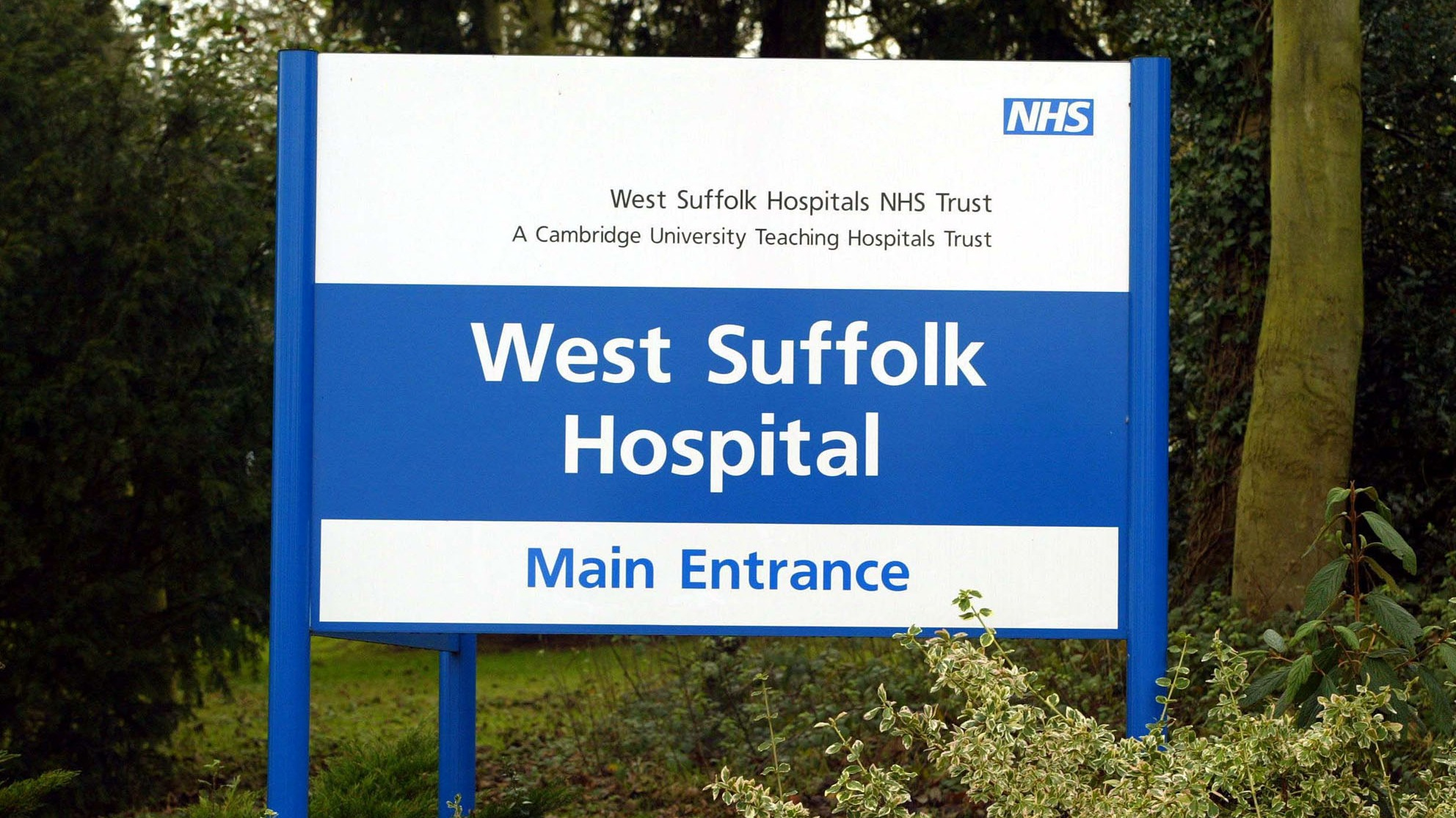 a visit to hospital essay My hospital experience but an unknown illness that caused me to actually go to the hospital if you are the original writer of this essay and no longer.