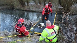 Milo was rescued using an inflatable walkway