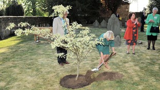 The Duchess of Cornwall plants the wedding cake tree in Tetbury