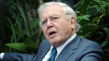Sir David Attenborough stressed that there has never been a collective effort to tackle climate change.