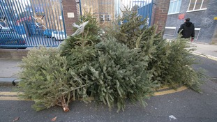 Still got your Christmas tree up? Almost time to take it down