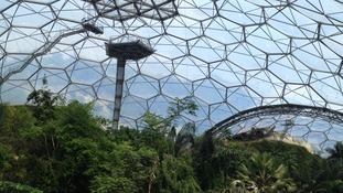 Inside one of Eden's famous biomes