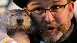 Groundhog Punxsutawney Phil makes his annual prediction in Pennsylvania.