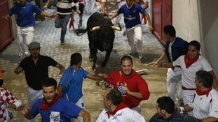 The bull enters the bullring during the third running of the bulls at this year's San Fermin festival.