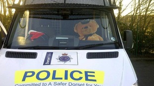 The teddy gets pride of place in a Dorset Police van.