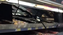 Cheeky magpie sneaks into supermarket