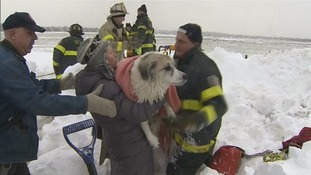 Man rescued after jumping into icy marsh after pet dogs
