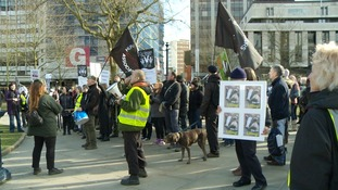 The march was part of the Birmingham Wildlife Festival and protesters described themselves as the 'Badger Army'