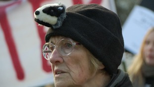 The campaigners marched from Centenary Square to St Philip's Cathedral, demanding badger culling be stopped