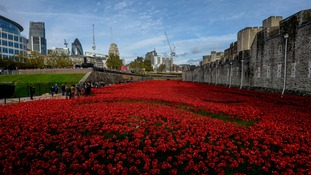 'Blood Swept Lands and Seas of Red' at the Tower of London