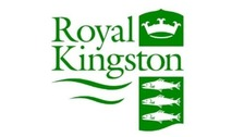 Kingston council logo.