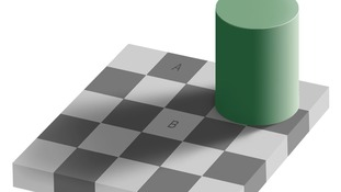 The Adelson chessboard illusion.