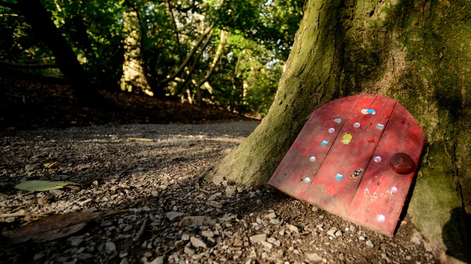 Enchanted Somerset forest takes action as \u0027fairy doors\u0027 become \u0027out of control\u0027 & Enchanted Somerset forest takes action as \u0027fairy doors\u0027 become ...