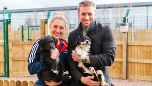 Olympic gold duo make time for homeless dogs