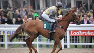 Benbane Head ridden by Matt O'Connor